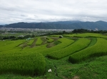 nagano_2015_4.JPG